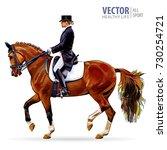 equestrian sport. horsewoman... | Shutterstock .eps vector #730254721