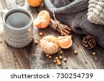 details of still life in the... | Shutterstock . vector #730254739