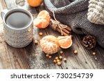 details of still life in the... | Shutterstock . vector #730254739