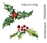 watercolor holly set. hand...   Shutterstock . vector #730265059