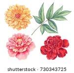 Dahlia And Peony. Floral Set O...