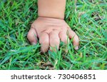 baby hand on green grass in the ... | Shutterstock . vector #730406851