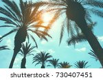 Silhouette Of Palm Trees In...