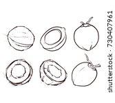 coconut outline isolated on... | Shutterstock .eps vector #730407961