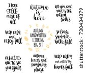 autumn quotes lettering set....   Shutterstock .eps vector #730434379