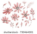 watercolor  flowers isolated on ... | Shutterstock . vector #730464301