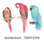 Watercolor Parrot Couple....