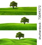 Green Season