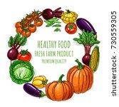 vegetables illustration...   Shutterstock .eps vector #730559305
