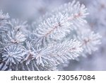winter and christmas background.... | Shutterstock . vector #730567084