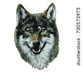 wolf head sketch vector... | Shutterstock .eps vector #730573975