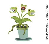carnivorous plant in a pot....   Shutterstock . vector #730632709