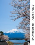 mountain fuji and cherry... | Shutterstock . vector #730647019