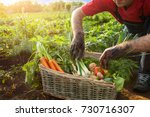 man and basket with vegetables... | Shutterstock . vector #730716307