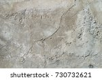 rough wall  rough cement | Shutterstock . vector #730732621