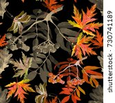 autumn branches and leaves... | Shutterstock . vector #730741189
