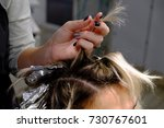 hair coloring by hairdresser's | Shutterstock . vector #730767601