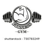 fitness emblems  muscle armss ... | Shutterstock .eps vector #730783249