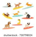 dog surfers set  vector cartoon ... | Shutterstock .eps vector #730798024
