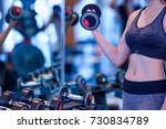 woman doing muscle training at... | Shutterstock . vector #730834789
