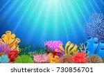 corals with underwater view... | Shutterstock . vector #730856701