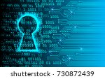 safety concept  closed padlock...   Shutterstock .eps vector #730872439