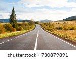 autumn landscape in the... | Shutterstock . vector #730879891