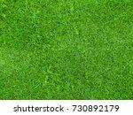fresh grass field | Shutterstock . vector #730892179