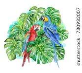 Monstera. Blue Yellow Macaw....
