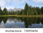 Teton Mountains And Forest...