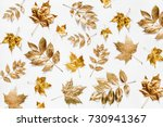 Autumn Composition. Pattern...