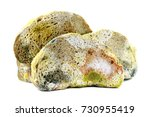 moldy bread  isolated on white... | Shutterstock . vector #730955419