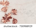 autumn rose gold colored leaves ... | Shutterstock . vector #730988929