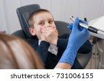 dentist in gloves holding in...   Shutterstock . vector #731006155