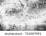 abstract background. monochrome ... | Shutterstock . vector #731007091