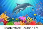 cartoon dolphin with coral reef ... | Shutterstock . vector #731014471
