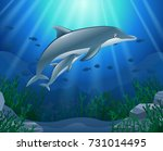 cartoon dolphin with coral reef ... | Shutterstock . vector #731014495