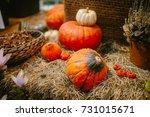 decorative pumpkins on straw.... | Shutterstock . vector #731015671