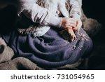 hands little hungry... | Shutterstock . vector #731054965