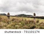 rainy autumn in the mountains | Shutterstock . vector #731101174