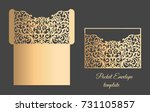 vector lacer cut pocket... | Shutterstock .eps vector #731105857