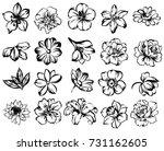 flower set | Shutterstock . vector #731162605