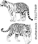 set of vector drawings on the... | Shutterstock .eps vector #731177449