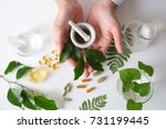 the scientist or doctor make... | Shutterstock . vector #731199445