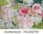 flower background . rose... | Shutterstock . vector #731203759