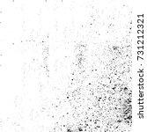 black and white grunge... | Shutterstock . vector #731212321