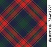 diagonal fabric texture plaid... | Shutterstock .eps vector #731245009