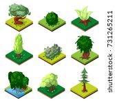 public park decorative trees... | Shutterstock .eps vector #731265211