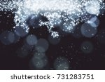 abstract sparkling silver... | Shutterstock . vector #731283751