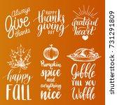 vector thanksgiving lettering... | Shutterstock .eps vector #731291809
